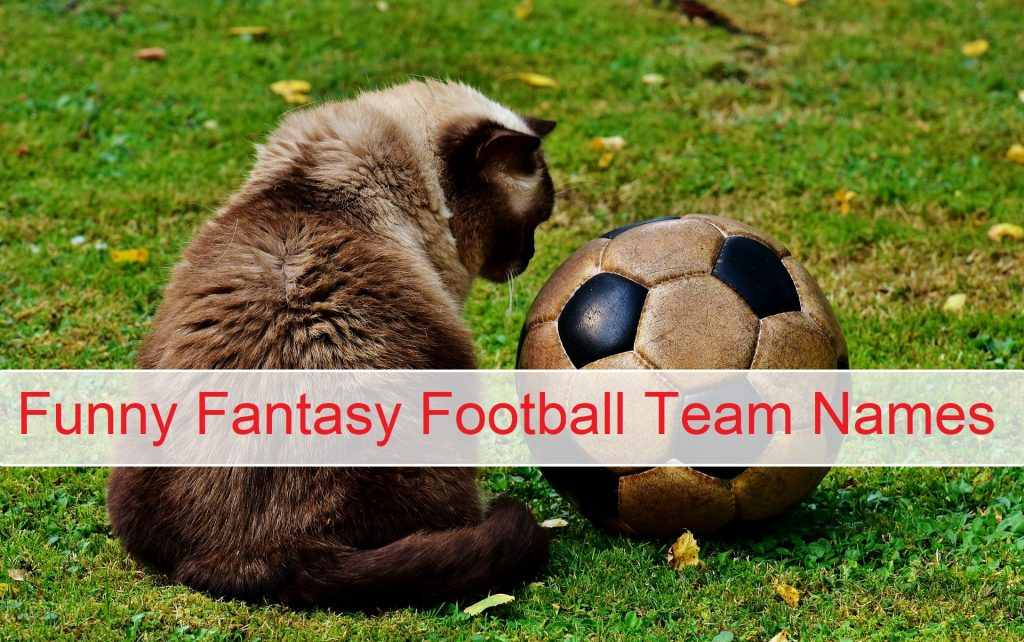 750+ Best Fantasy Football Team Names Make Your Team Famous 1