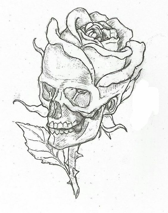 Skeleton Art - Step by Step Guide to Draw