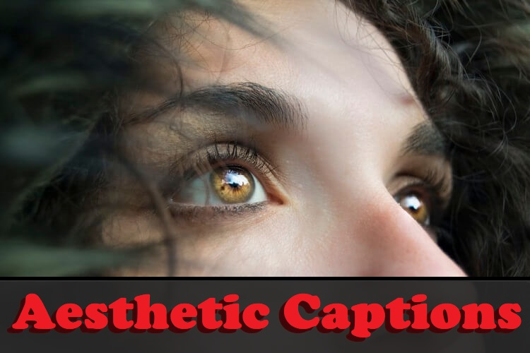 Aesthetic Captions