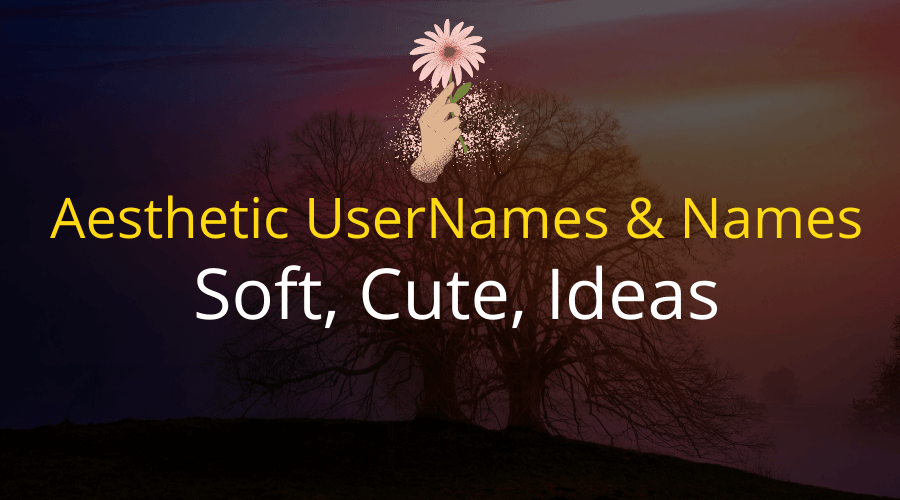 Aesthetic UserNames & Names