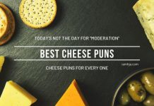 Best Cheese Puns