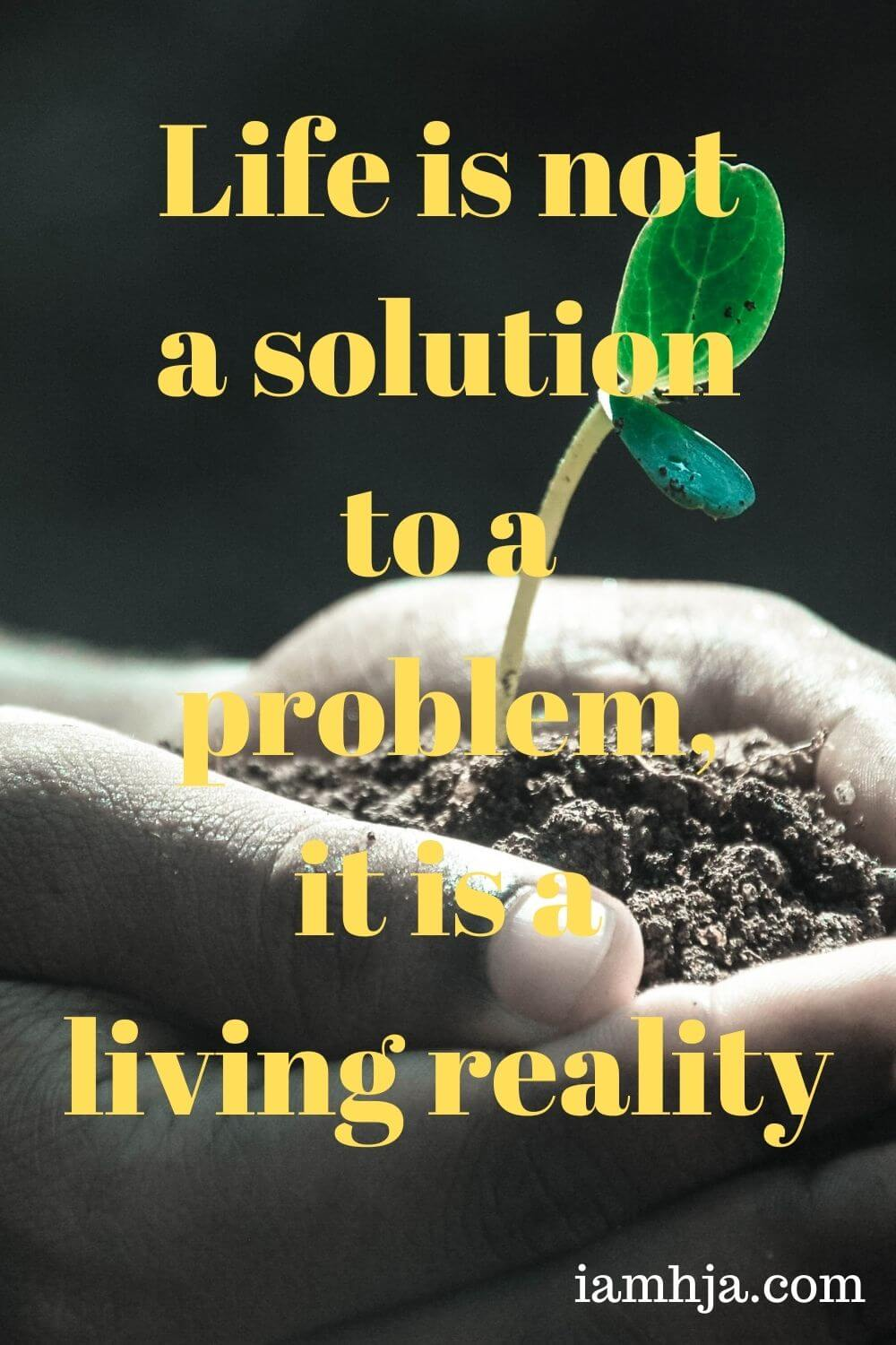 Life is not a solution to a problem, it is a living reality