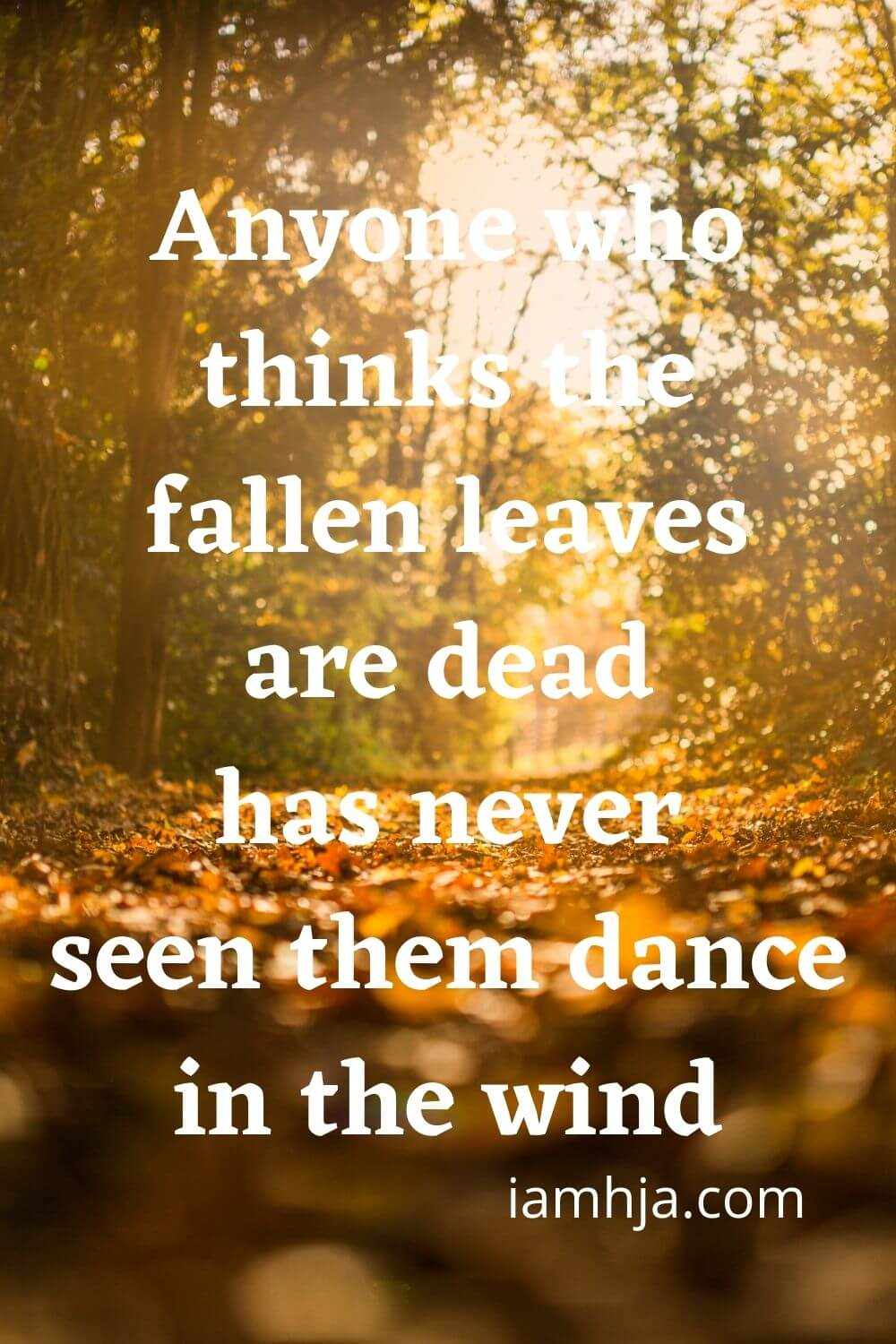 Anyone who thinks the fallen leaves are dead has never seen them dance in the wind