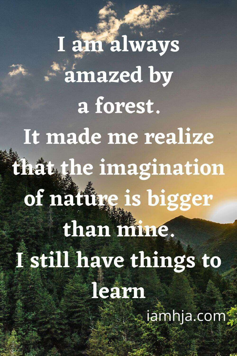 I am always amazed by a forest. It made me realize that the imagination of nature is bigger than mine. I still have things to learn