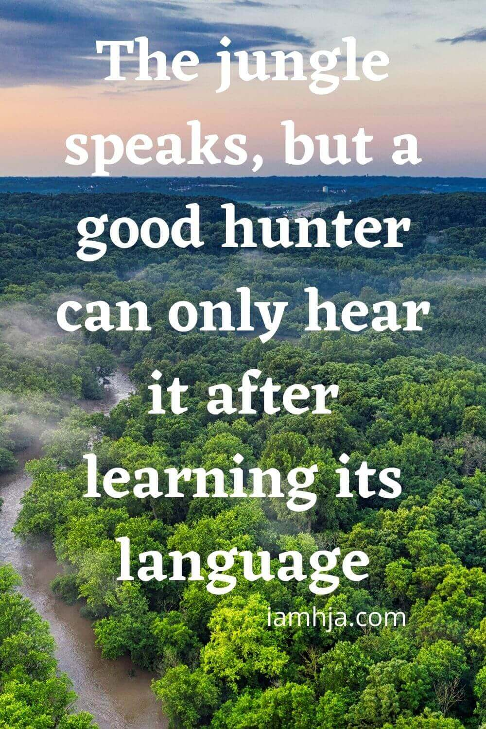 The jungle speaks, but a good hunter can only hear it after learning its language